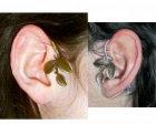 ear blad