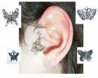 ear vlinder