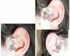 butterfly ear